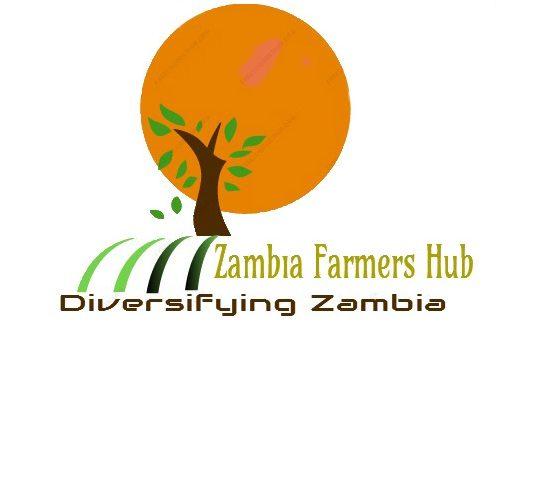 Zambia Farmers hub